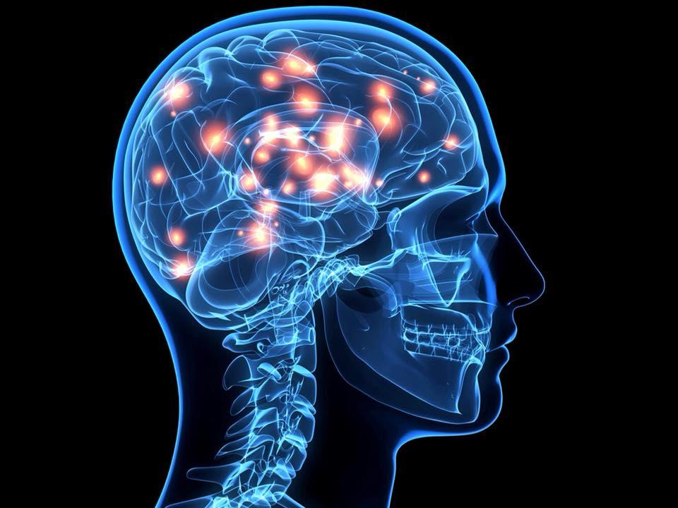 Neurológia magánrendelés - Koroknai Medical